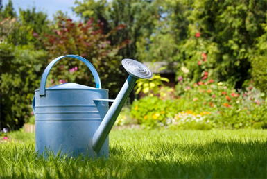 Garden Watering Products