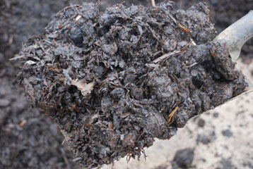 Manure and Soil Conditioners