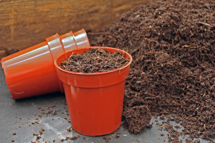 Peat Based Compost