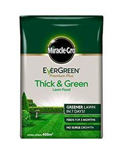 Evergreen Premium Lawn Food - 400sqm